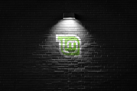 linux mint wall-574x383.PNG