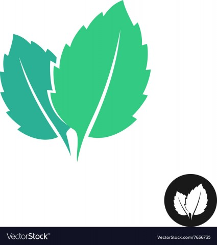 mint-leaves-logo-two-leaves-of-a-mint-with-one-vector-7636735.jpg