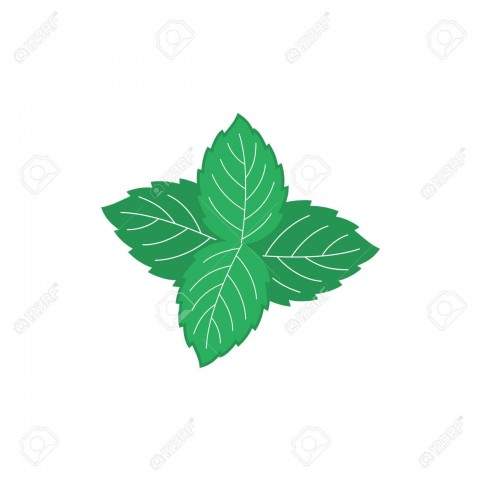 59667648-mint-leaves-illustration-four-green-mint-leaves-color-symbol-.jpg